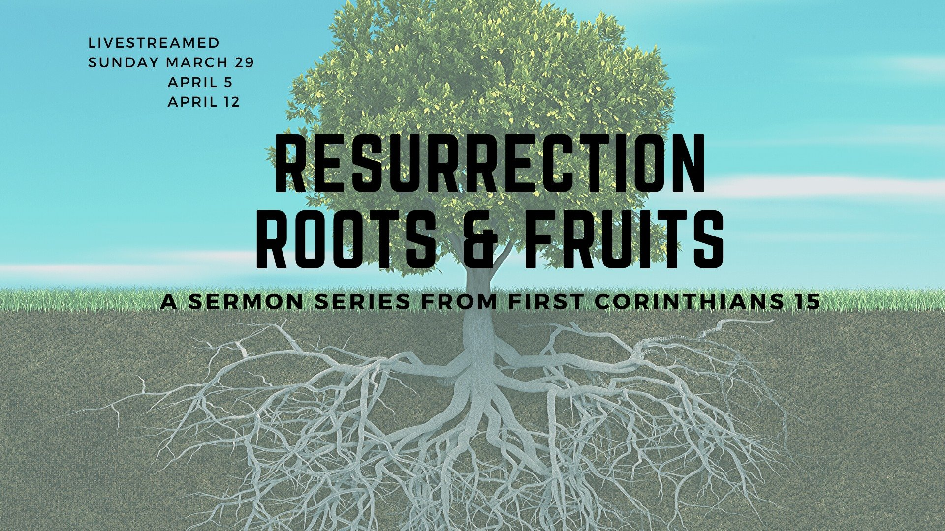 Resurection Roots and Fruits Sermon Series
